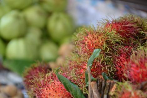 Delicious Rambutan